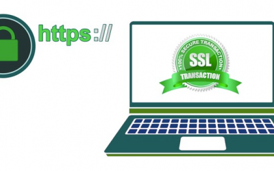 Importance of SSL Certificates in Business